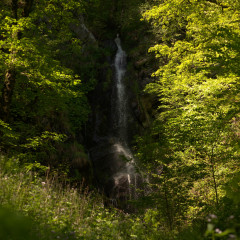 Wasserfall Plästerlegge